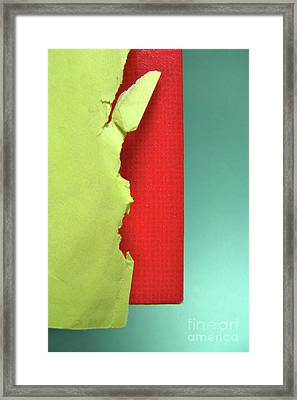 Primary Framed Print by CML Brown