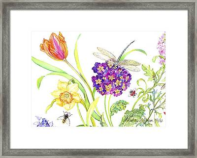 Primrose And Dragonfly Framed Print by Kimberly McSparran