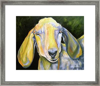 Prize Nubian Goat Framed Print by Susan A Becker