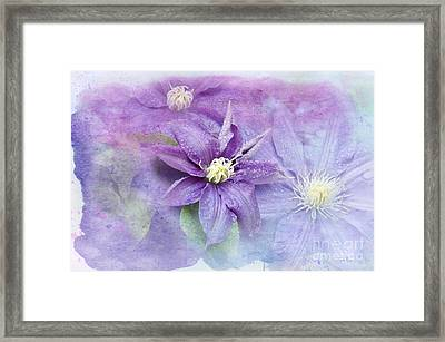 Profusion Of Purple Framed Print by Betty LaRue