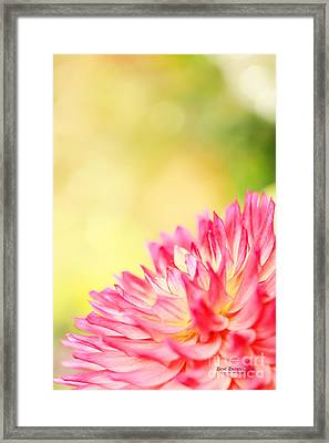 Promises Framed Print by Beve Brown-Clark Photography