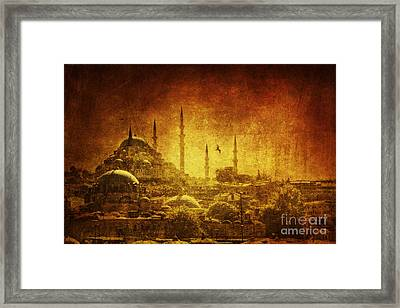 Prophetic Past Framed Print by Andrew Paranavitana
