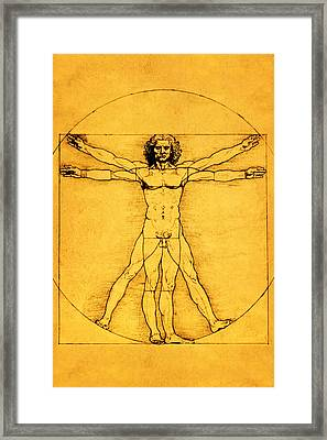 Proportions Of The Human Figure Framed Print by Celestial Images