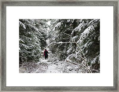Protective Forest In Winter With Snow Covered Conifer Trees Framed Print by Matthias Hauser