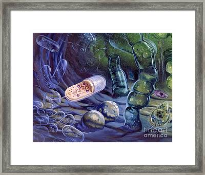 Proterozoic Period Framed Print by Publiphoto