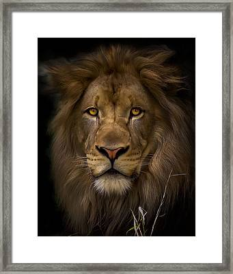 Proud Framed Print by Cheri McEachin