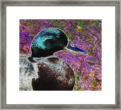 Psychedelic Anatidaephobia Framed Print by Lisa Brandel
