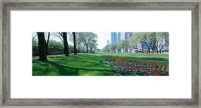 Public Gardens, Loop, Cityscape, Grant Framed Print by Panoramic Images