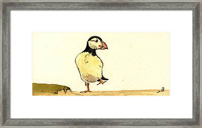 Puffin Bird Framed Print by Juan  Bosco