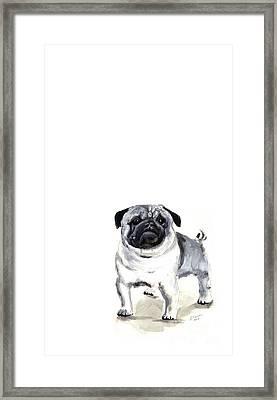 Pug 1 Framed Print by Barbara Marcus