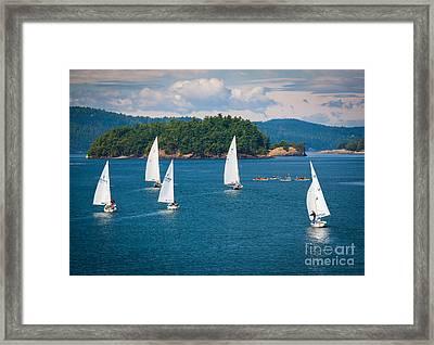 Puget Sound Sailboats Framed Print by Inge Johnsson