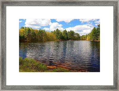 Pulaski Park Framed Print by Lourry Legarde