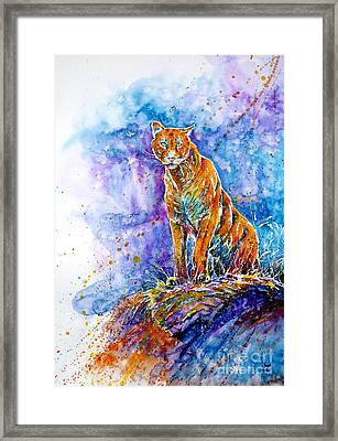 Puma. Listening To The Sounds Of The Mountains.  Framed Print by Zaira Dzhaubaeva