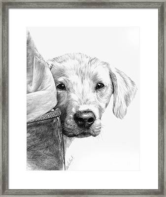 Puppies And Wellies Framed Print by Sheona Hamilton-Grant