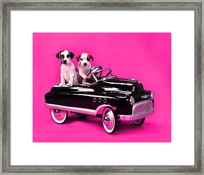 Puppies In Pedal Car On Hot Pink Framed Print by Rebecca Brittain