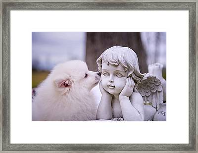 Puppy And Angel  Framed Print by Bonnie Barry