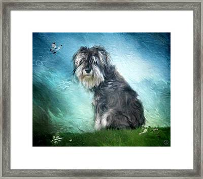 Puppy Explores The World Framed Print by Gun Legler