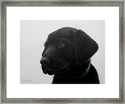 Puppy Eyes Framed Print by Peter Mathios
