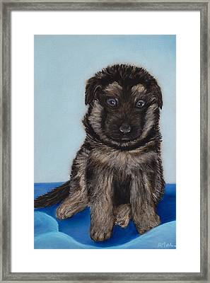 Puppy - German Shepherd Framed Print by Anastasiya Malakhova