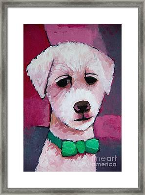 Puppy Framed Print by Lutz Baar