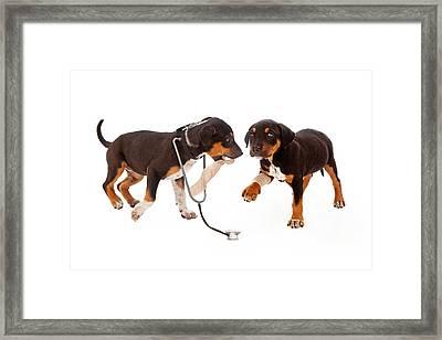 Puppy Veterinarian And Patient Framed Print by Susan  Schmitz