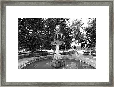 Purdue University Fountain Framed Print by University Icons