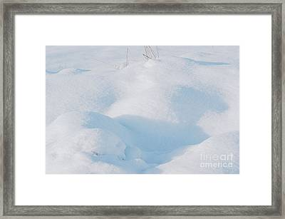 Pure Snow Framed Print by Carol Lynch