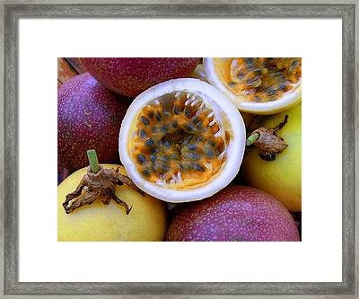 Purple And Yellow Passion Fruit Framed Print by James Temple