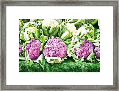Purple Cauliflower Framed Print by Tom Gowanlock
