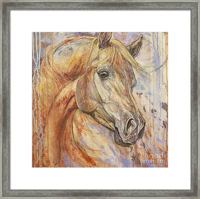 Purple Dawn Arabian Framed Print by Silvana Gabudean