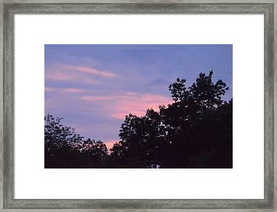 Purple Haze Framed Print by Sonali Gangane