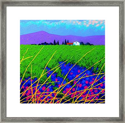 Purple Hills Framed Print by John  Nolan