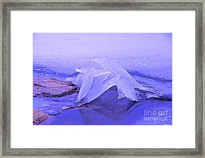 Purple Ice Framed Print by Randi Shenkman