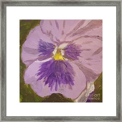 Purple Pansy 1 Framed Print by Vicki Maheu