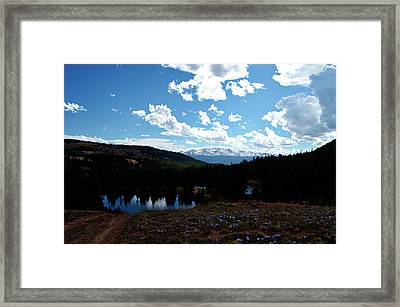 Purple Pasques Popping Framed Print by Jeremy Rhoades