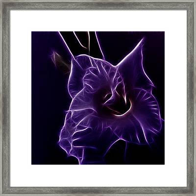 Purple Passion Framed Print by Sharon Lisa Clarke