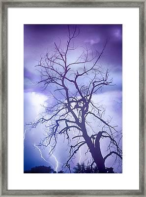 Purple Rain Framed Print by James BO  Insogna
