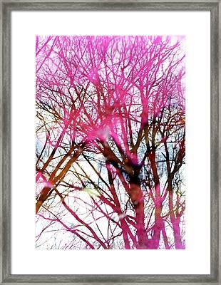 Purple Reflection 35mm Film Framed Print by Dave Morgan