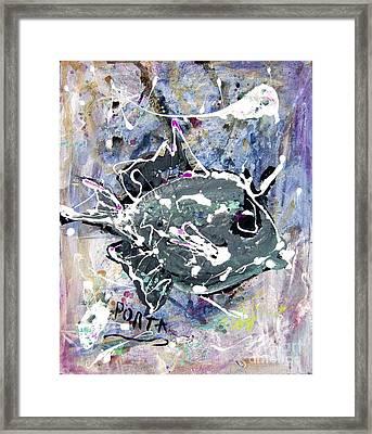 Purple Triggerfish Framed Print by Dustin Porta