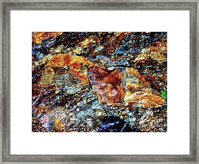Pyrite Treasure Framed Print by Janine Riley