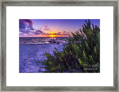 Quality Time Framed Print by Marvin Spates