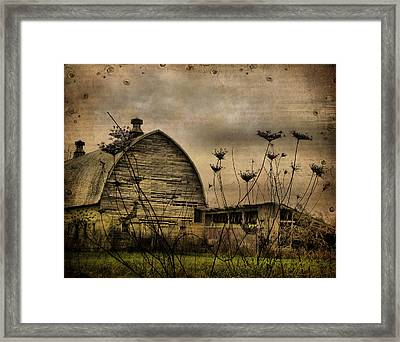 Queen Anne's View Barn Collage Framed Print by Gothicolors Donna Snyder