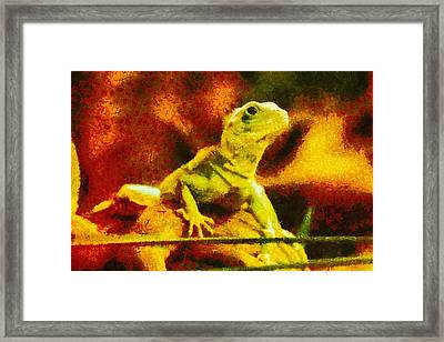 Queen Of The Reptiles Framed Print by Ayse Deniz
