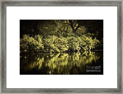 Quiet Reflections Framed Print by Elena Elisseeva