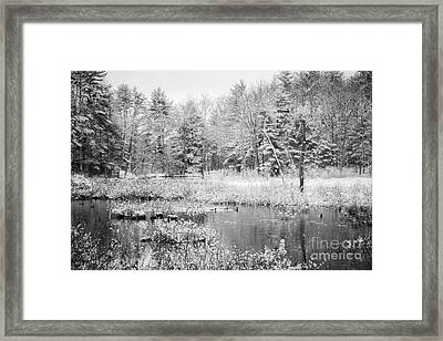 Quiet Storm Framed Print by Sue OConnor