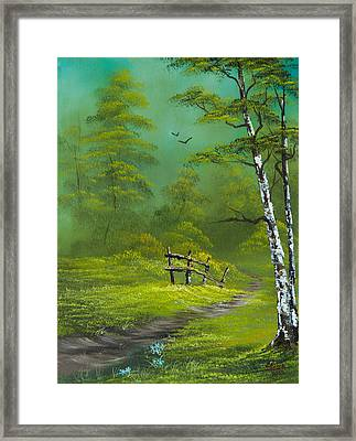 Quiet Trail Framed Print by C Steele