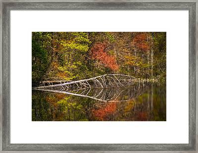 Quiet Waters In Autumn Framed Print by Debra and Dave Vanderlaan