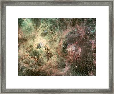 R136 Doradus Nebula Magellanic Cloud Framed Print by Celestial Images