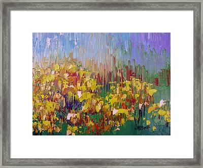 Rabbit Brush Abstracted Framed Print by Margaret Bobb