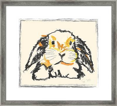 Rabbit Jon Framed Print by Go Van Kampen